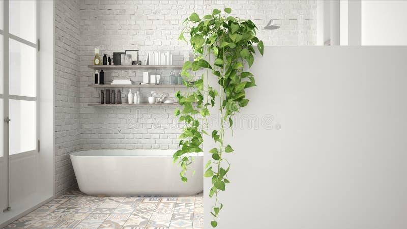 Fondo verde de concepto de diseño interior con el espacio de la copia, pared blanca del primero plano con la planta en conserva,  ilustración del vector