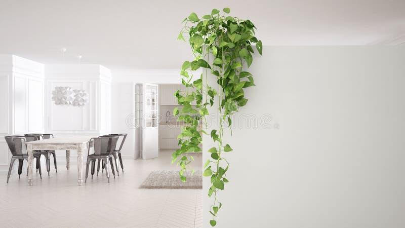 Fondo verde de concepto de diseño interior con el espacio de la copia, pared blanca del primero plano con la planta en conserva,  libre illustration