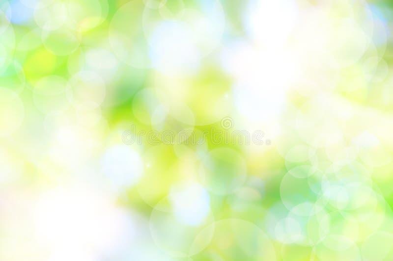 Fondo verde de la primavera libre illustration
