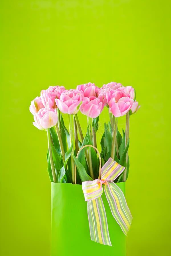Fondo verde dei fiori rosa del tulipano immagini stock