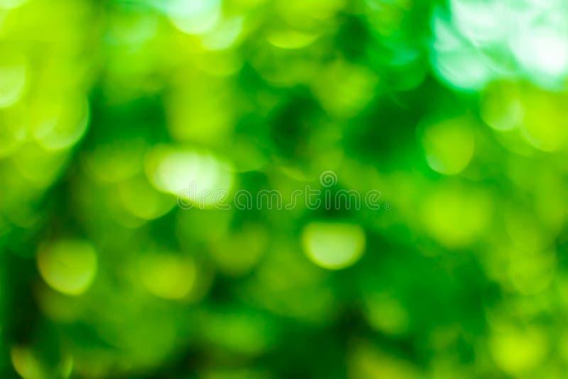 Fondo verde del bokeh Bokeh verde Extracto verde del bokeh, defoc fotos de archivo