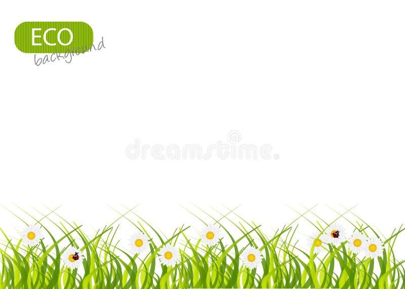 Fondo verde del resorte. ilustración del vector