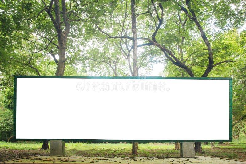 Fondo verde della natura della foresta con l'etichetta di eco immagine stock