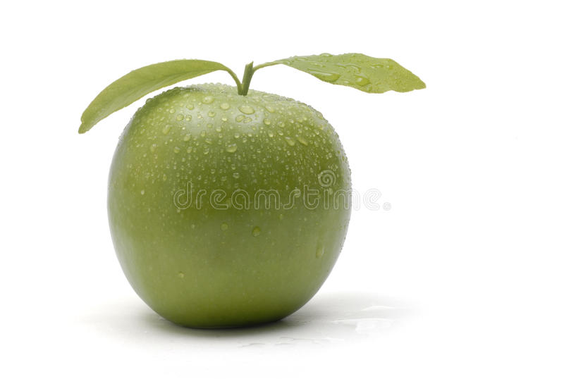 Fondo verde di bianco della mela fotografie stock libere da diritti
