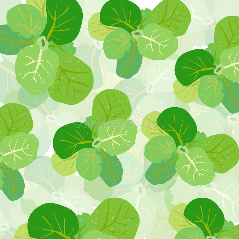 Fondo verde di vettore della lattuga illustrazione vettoriale