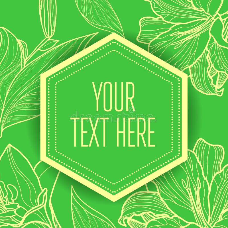 Fondo verde floral del vintage elegante del vector libre illustration