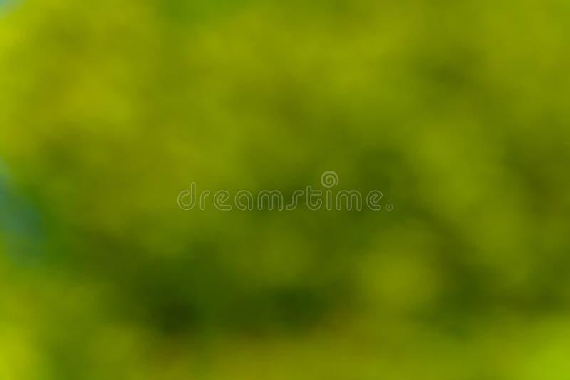 Fondo verde natural y extracto borroso Concepto de Eco fotos de archivo