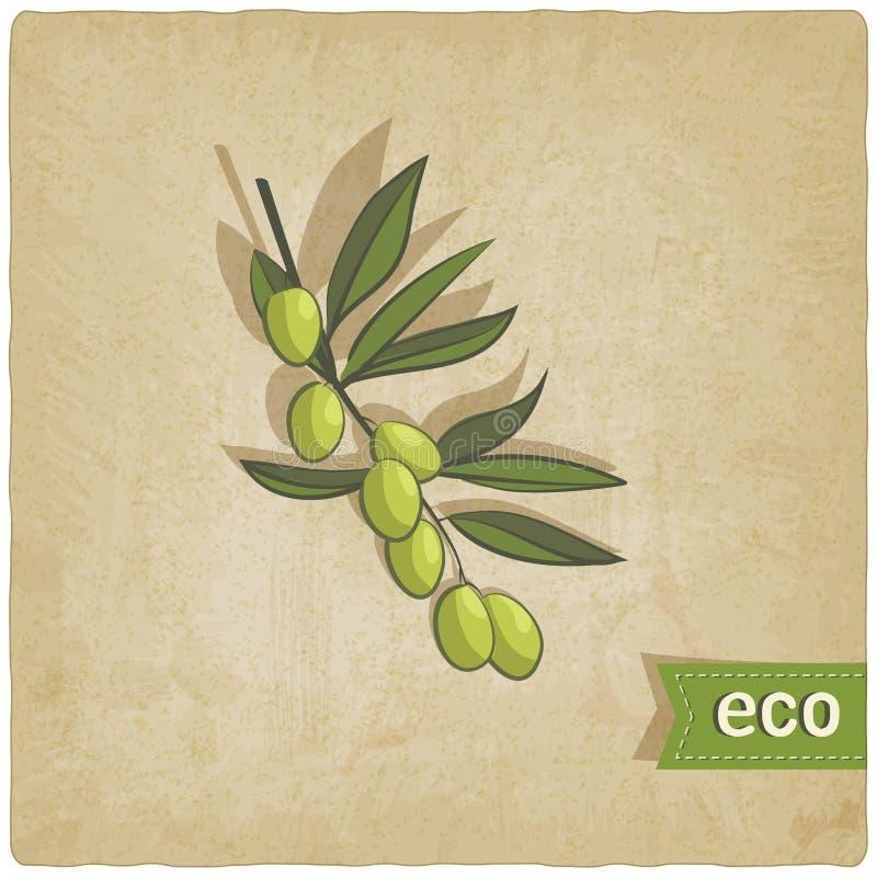 Fondo verde oliva del eco ilustración del vector