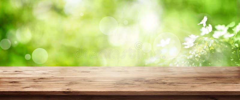 Fondo verde radiante della molla con la tavola di legno fotografia stock