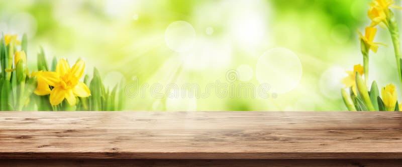 Fondo verde radiante della molla con la tavola di legno immagini stock