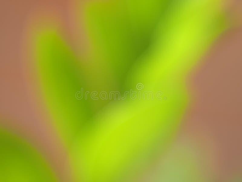 fondo verde suave de la falta de definición del extracto foto de archivo libre de regalías