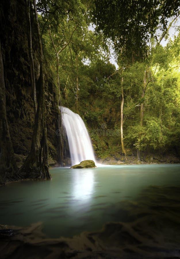 Fondo vertical de la naturaleza de la cascada tropical en selva imagen de archivo libre de regalías