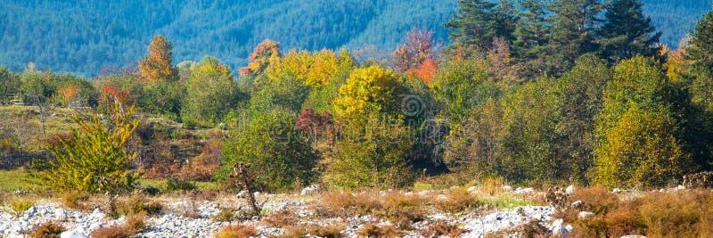Fondo vibrante di panorama di autunno con variopinto fotografia stock