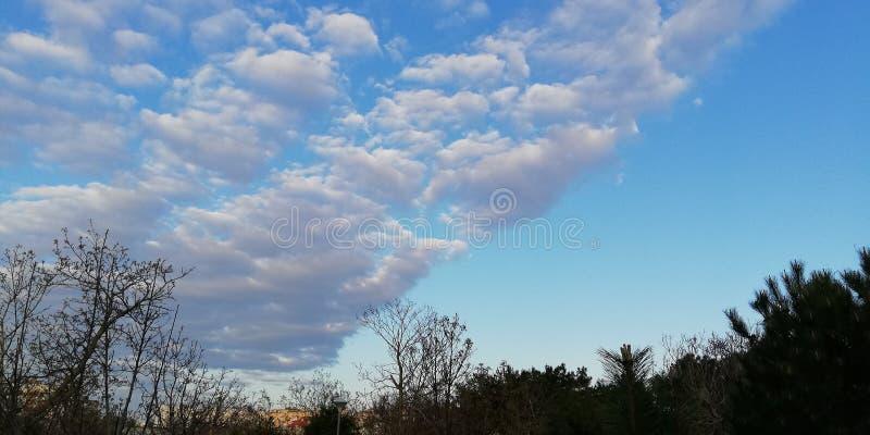 Fondo volante pulito leggero Nuvole bianche insolite su un cielo blu immagini stock