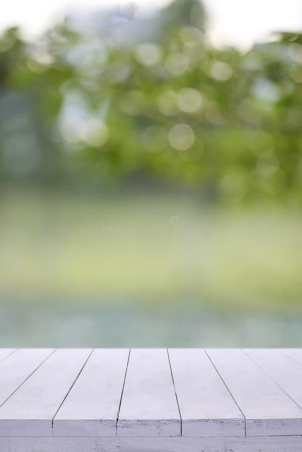 Fondo vuoto bianco degli alberi della sfuocatura della tavola del bordo di legno fotografia stock libera da diritti