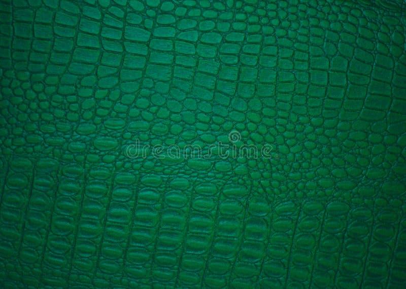 Fondos de cuero verdes, cuadro clásico fotografía de archivo libre de regalías