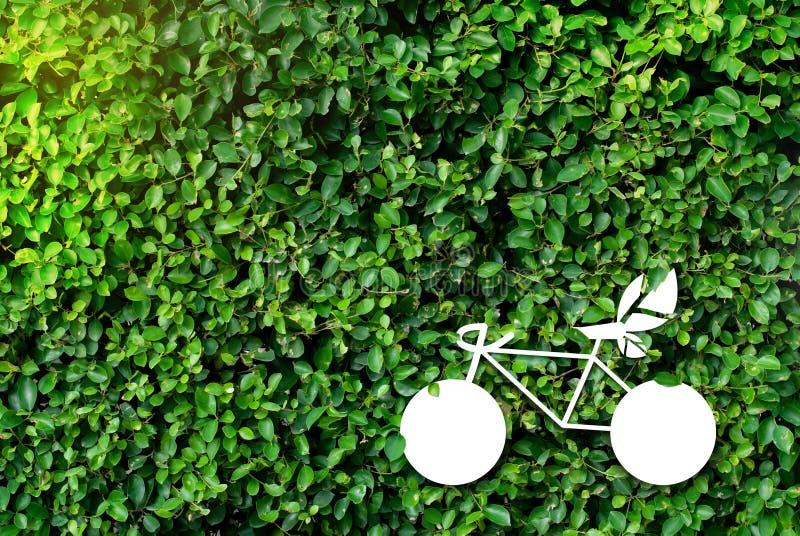 Fondos verdes naturales de la idea - concepto de reducción del calentamiento del planeta imagen de archivo libre de regalías