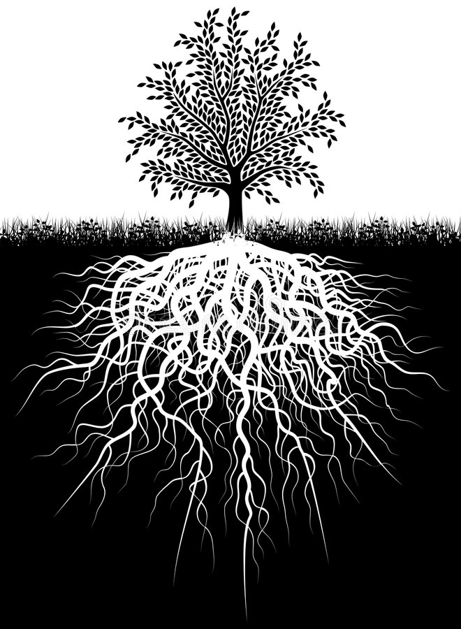 Fonds d'arbre illustration stock