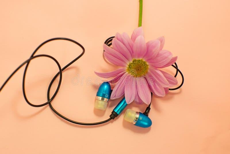 Fones de ouvido azuis do vácuo plástico digital moderno bonito com fios para escutar a música em um fundo cor-de-rosa imagens de stock royalty free
