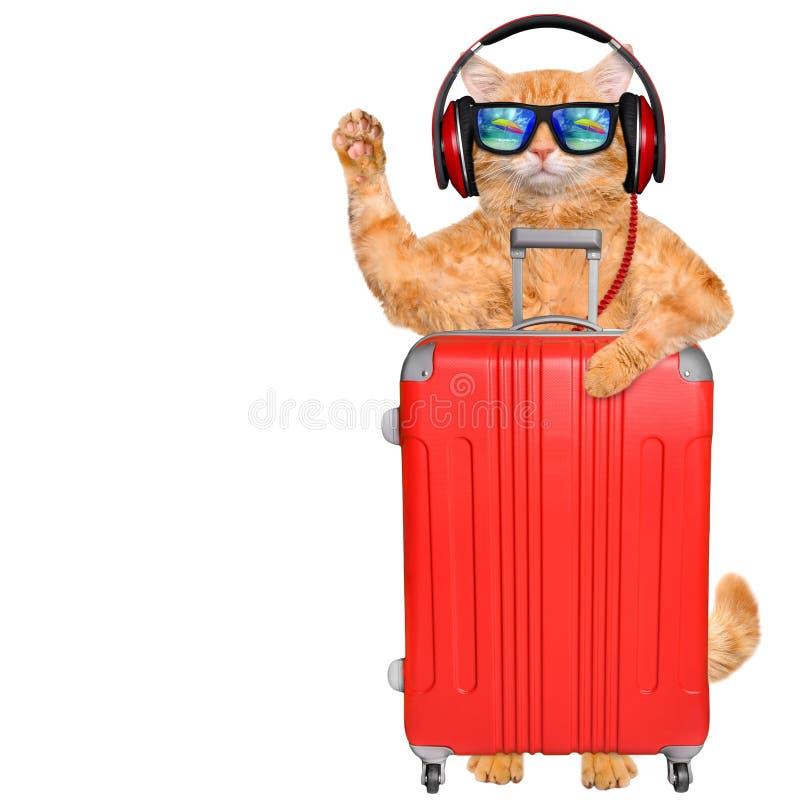 Fones de ouvido do gato com uma mala de viagem Óculos de sol vestindo do gato que relaxam no fundo do mar imagem de stock