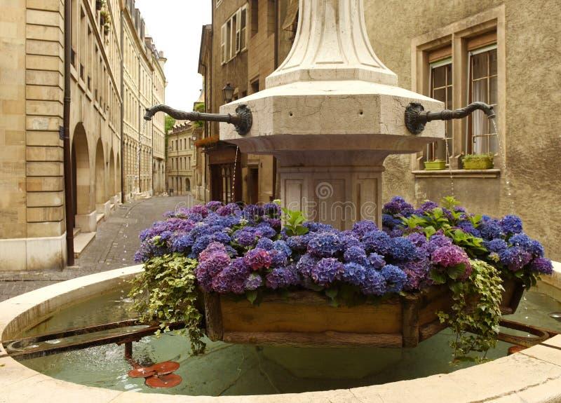 Fontain avec des fleurs sur la vieille ville Genève, Switzerlan de rue photographie stock libre de droits