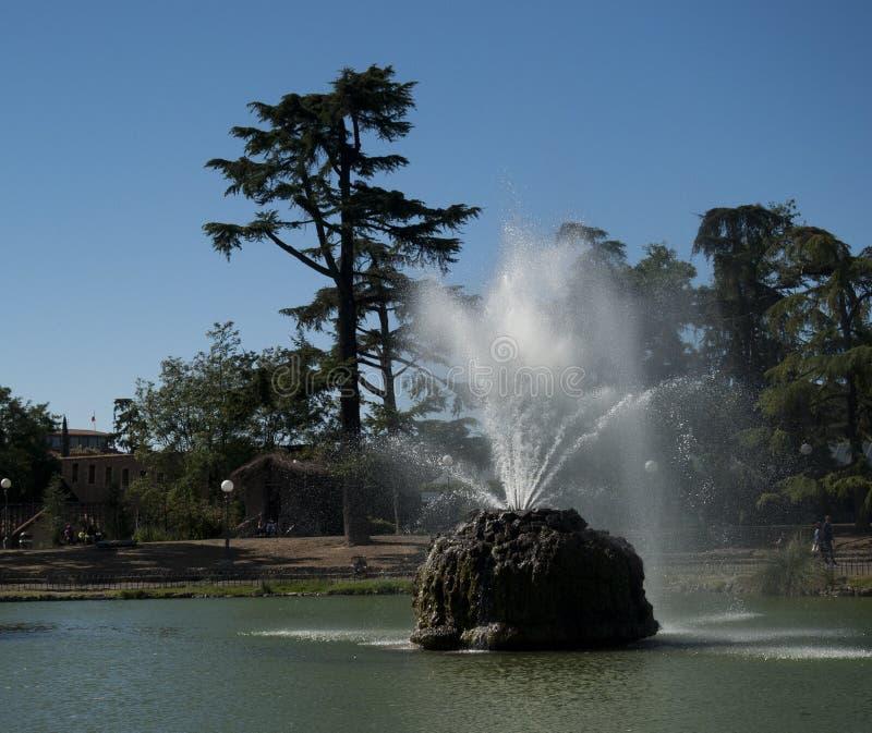 Fontaine dans le lac sur le parc photos libres de droits