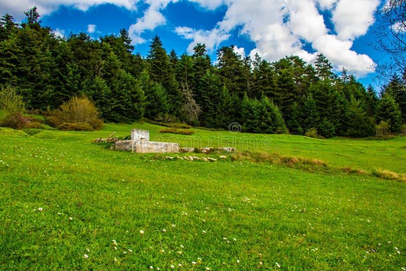 Fontaine dans le plateau photographie stock libre de droits