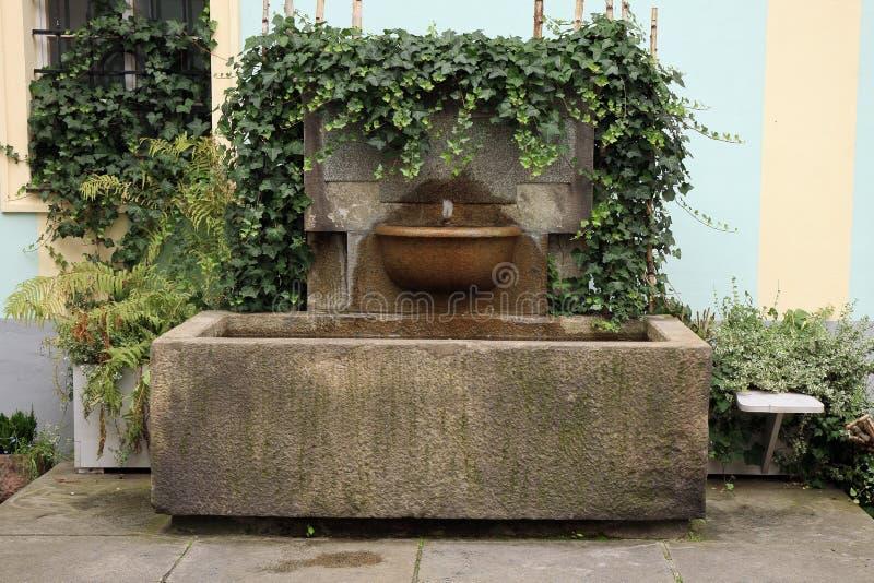 Fontaine de mur avec le lierre photo libre de droits