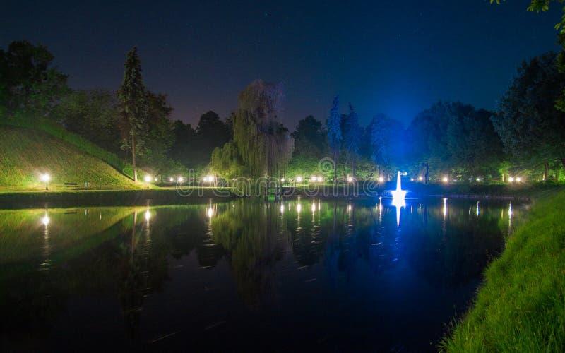 Fontaine en parc la nuit images libres de droits