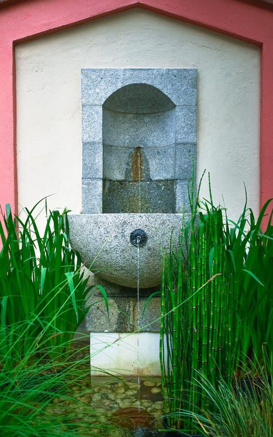 Fontaine paisible avec les usines en bambou photo stock