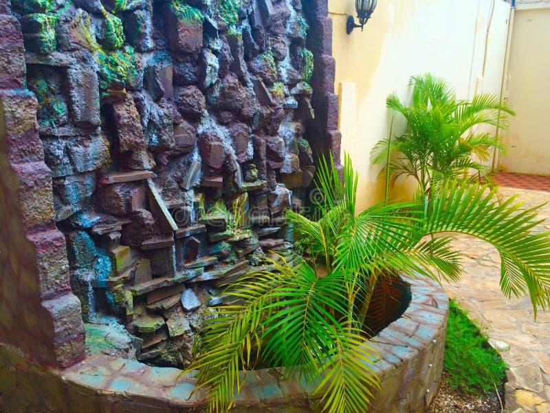 fontaine verte de nature photos libres de droits