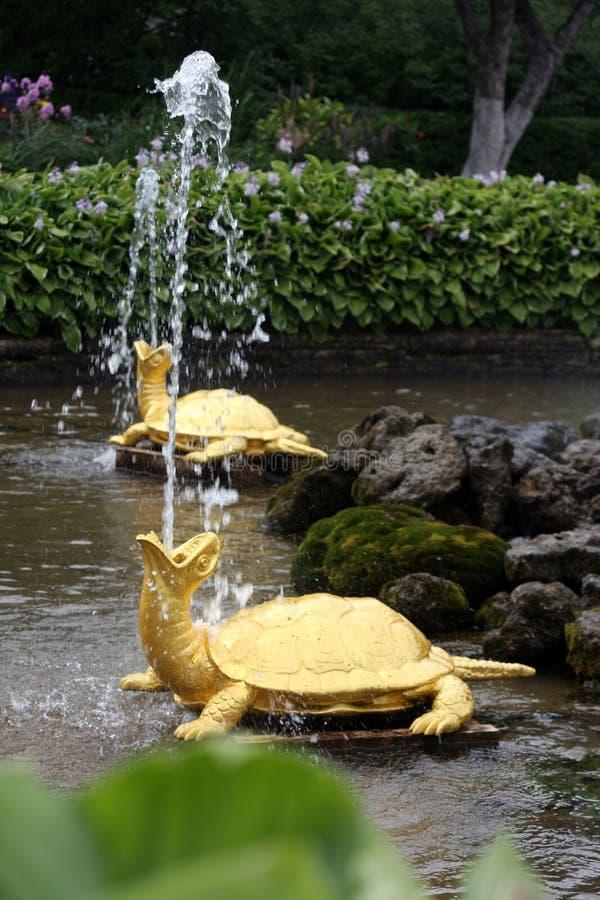 Fontaines dans Peterhof image stock