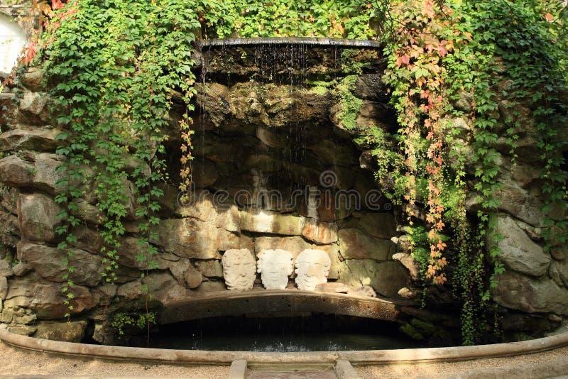 Fontana con l'edera fotografia stock