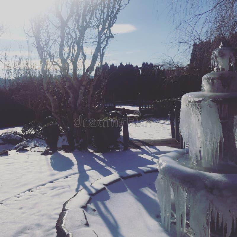 Fontana del ghiaccio fotografia stock
