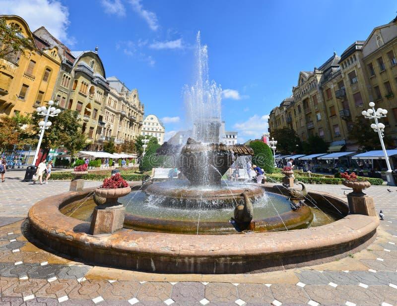 Fontana del pesce di Timisoara immagini stock