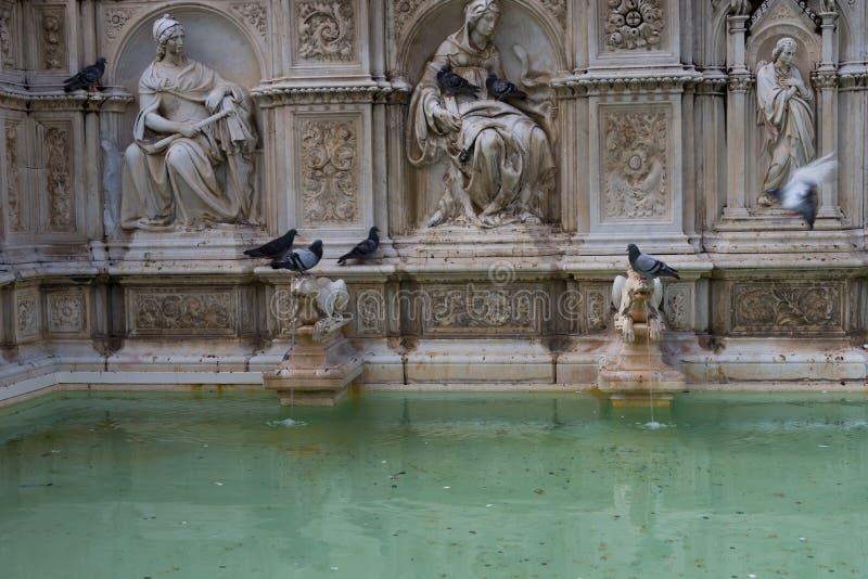 Fontana di Fonte Gaia di gioia, con vergine Maria ed il bambino Gesù Quadrato di Piazza del Campo Campo immagine stock