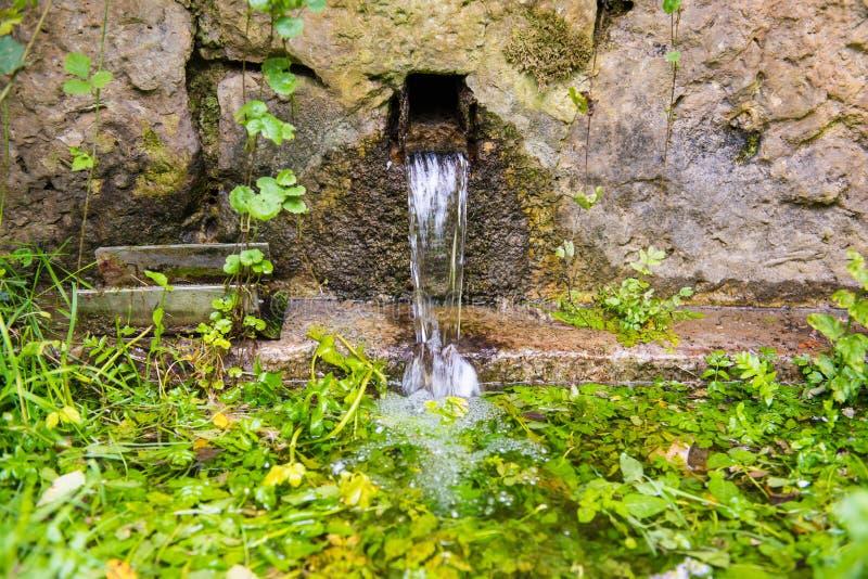 Fontana fresca della molla naturale immagini stock libere da diritti