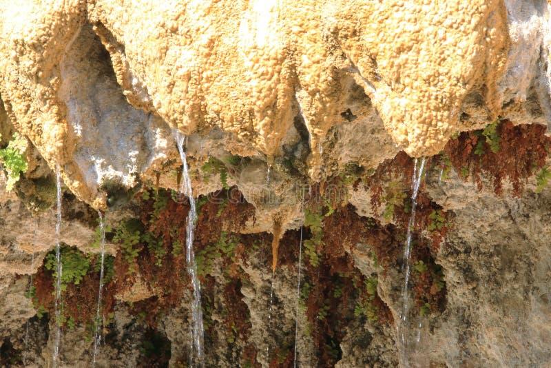 Fontana petrificata di gocciolamento di Réotier, Hautes-Alpes, Francia fotografia stock libera da diritti