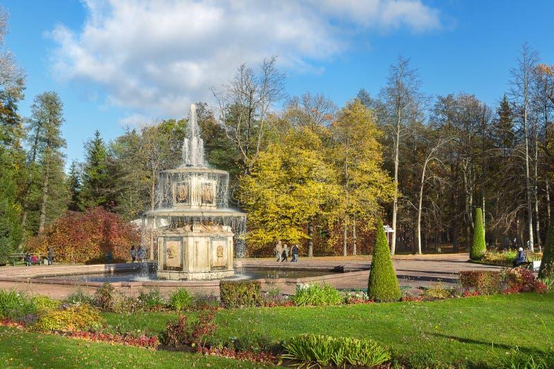 Fontana romana in giardini più bassi di Peterhof (St Petersburg) immagine stock libera da diritti