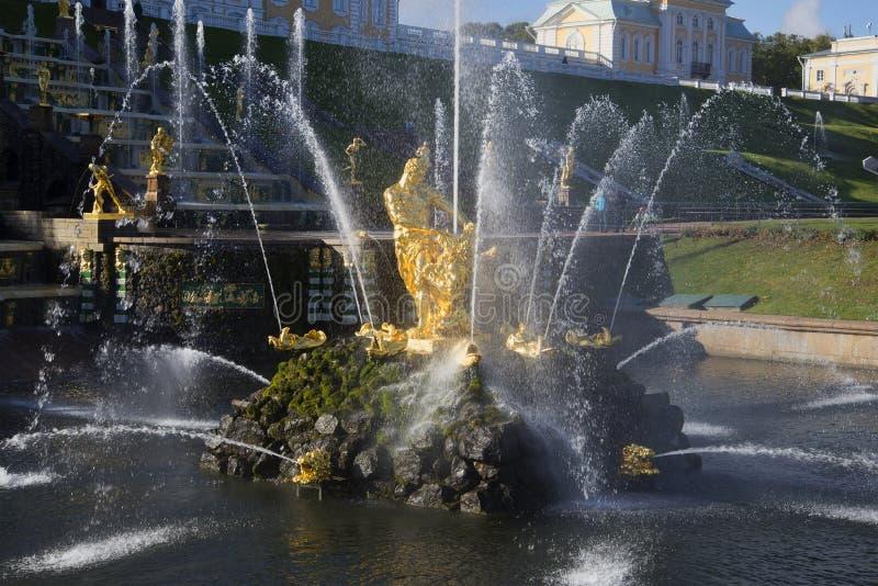 Fontana Samson che strappa la bocca del leone Un pezzo di grande cascata in Petrodvorets immagini stock libere da diritti