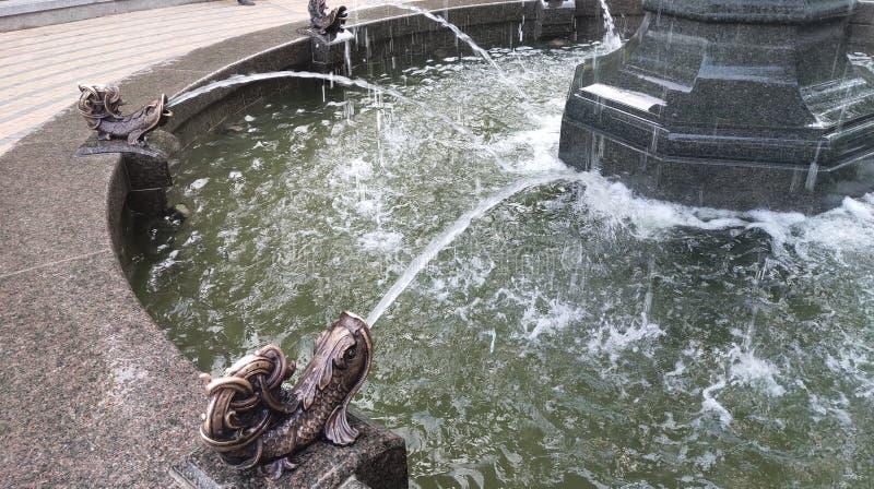 fontana su Vladimirskaya Gorka a Kiev fotografie stock