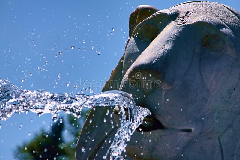 Fontane dei leoni di Ceccarini su Piazza del Popolo, a Roma immagini stock libere da diritti
