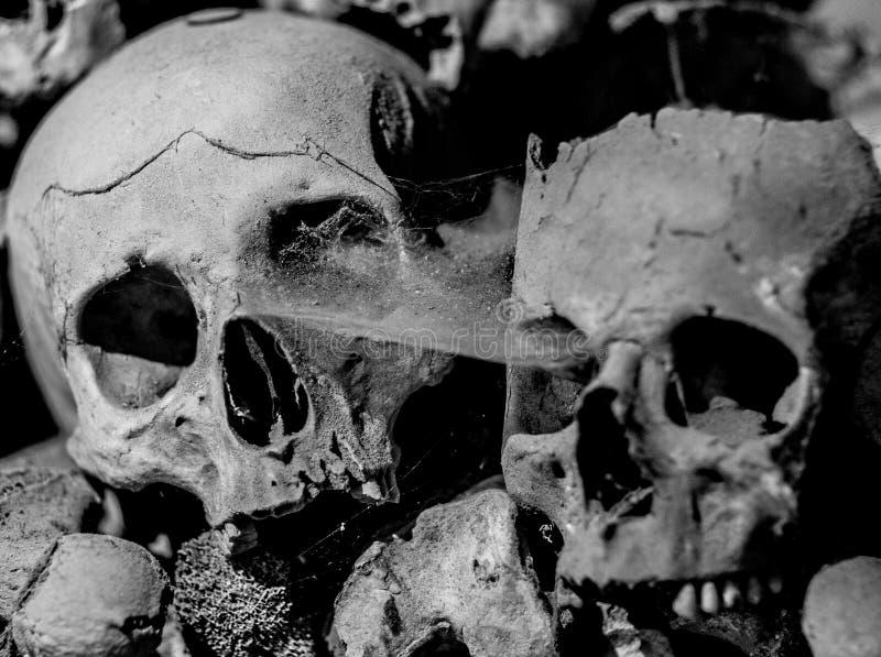 Fontanel kyrkogård i Naples, Italien fotografering för bildbyråer