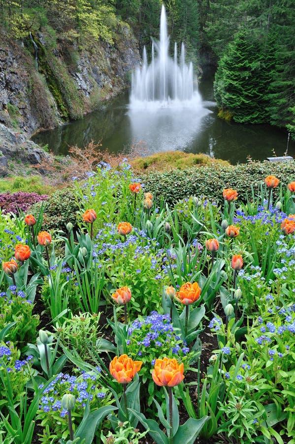 fontanna ogród obraz royalty free