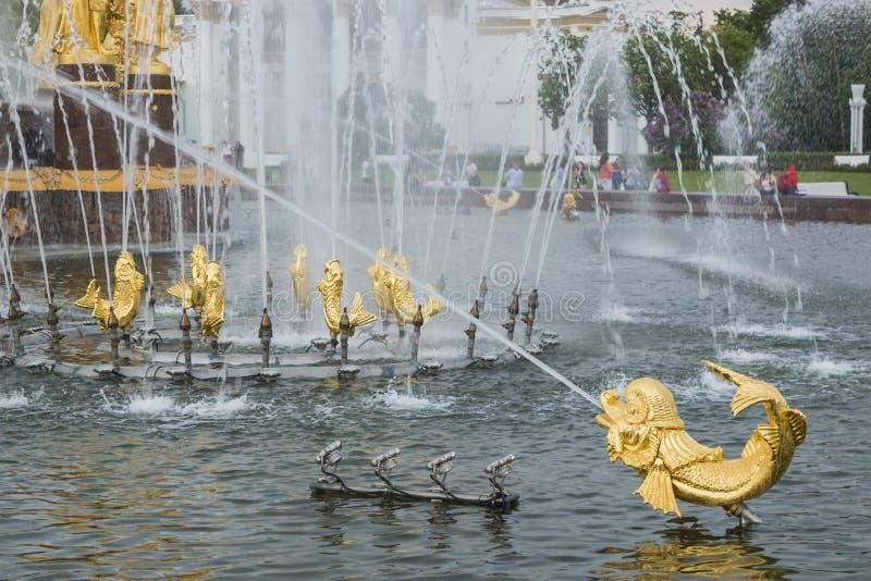Fontanna przyja?? zaludnia przy rosjanina powystawowym centrum w Moskwa, Rosja zdjęcie stock