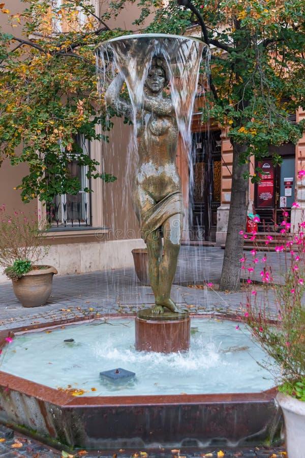 Fontanna Tarnok Utca w dzielnicy zamku w Budapeszcie, Węgry zdjęcia royalty free