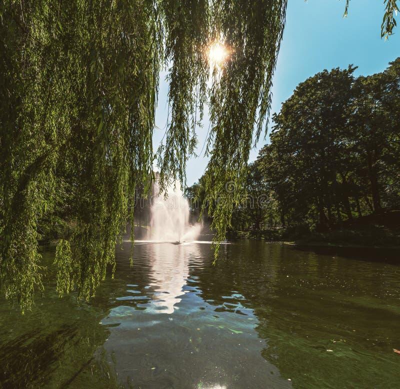 Fontanna w Ryskim kanale obraz stock