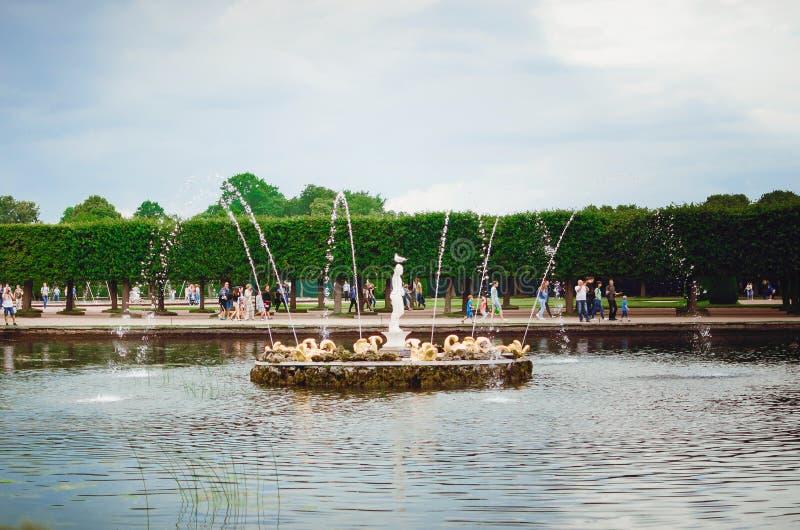 Fonte bonita do pal?cio listado de Peterhof do UNESCO em St Petersburg imagem de stock royalty free