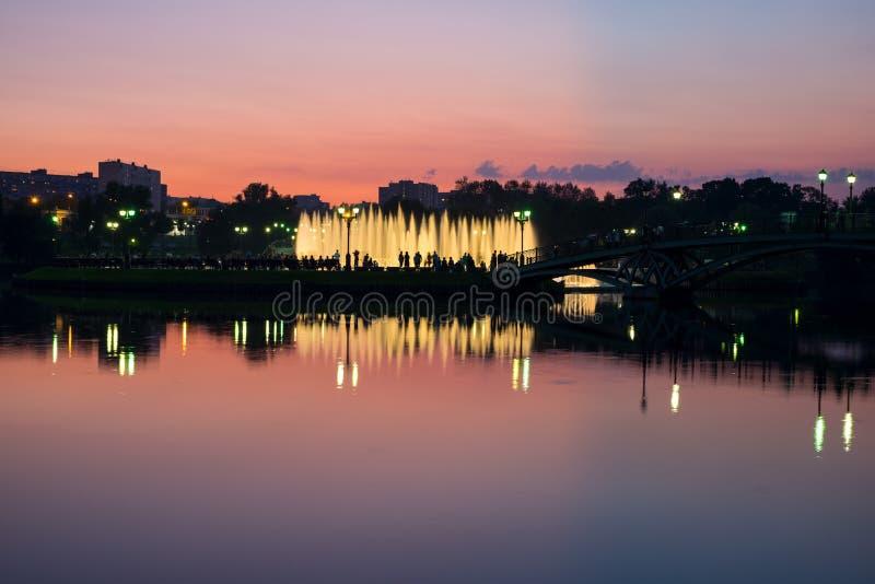 Fonte da noite no parque fotos de stock royalty free