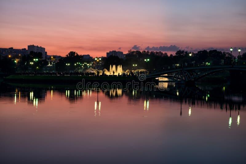 Fonte da noite no parque foto de stock
